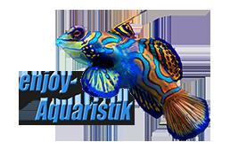 Enjoy Aquaristik
